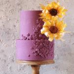 Cake Photography pic 4 rev